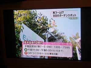 09-7-15htbichioshi1.jpg