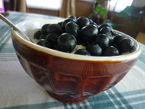 bluberry1.jpg