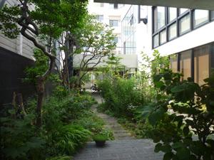 n-garden3.jpg