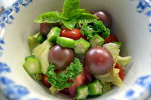 tomato33.jpg
