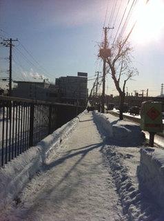 walk3.jpg
